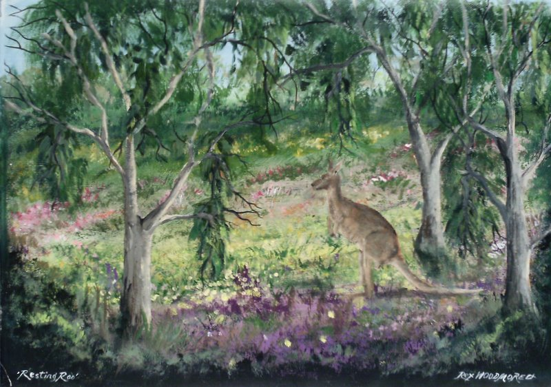 Resting Roo  by Rex Woodmore http://art-sale.weebly.com