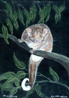 PossumPosing  by Rex Woodmore http://art-sale.weebly.com